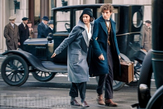fantastic-beasts-and-where-to-find-them-image-movie-3